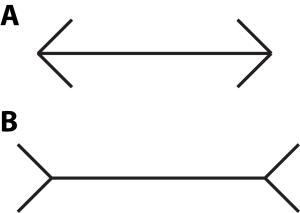 Muller-Lyer-illusion_variation (1)