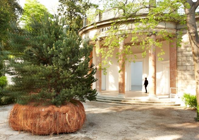 celeste-boursier-mougenot-french-pavilion-venice-art-biennale-designboom-03